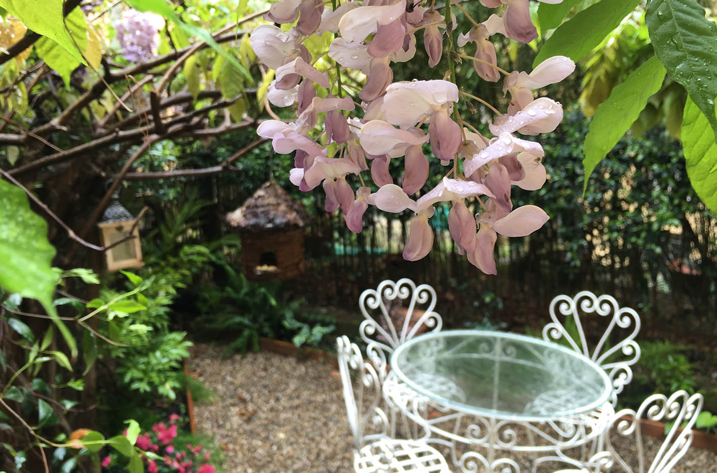 Progettazione giardino Genova (2)