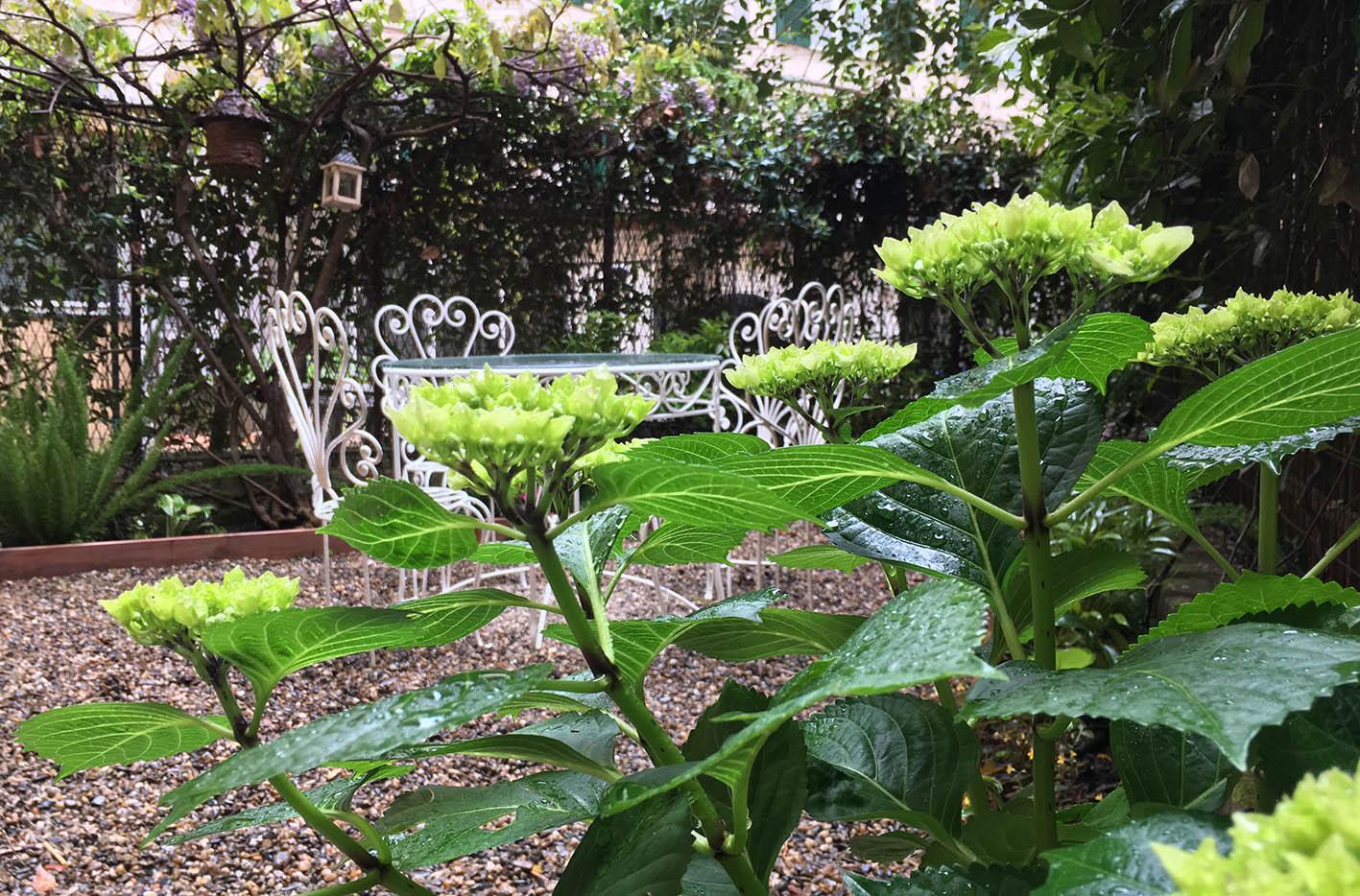 Progettazione giardino Genova (5)