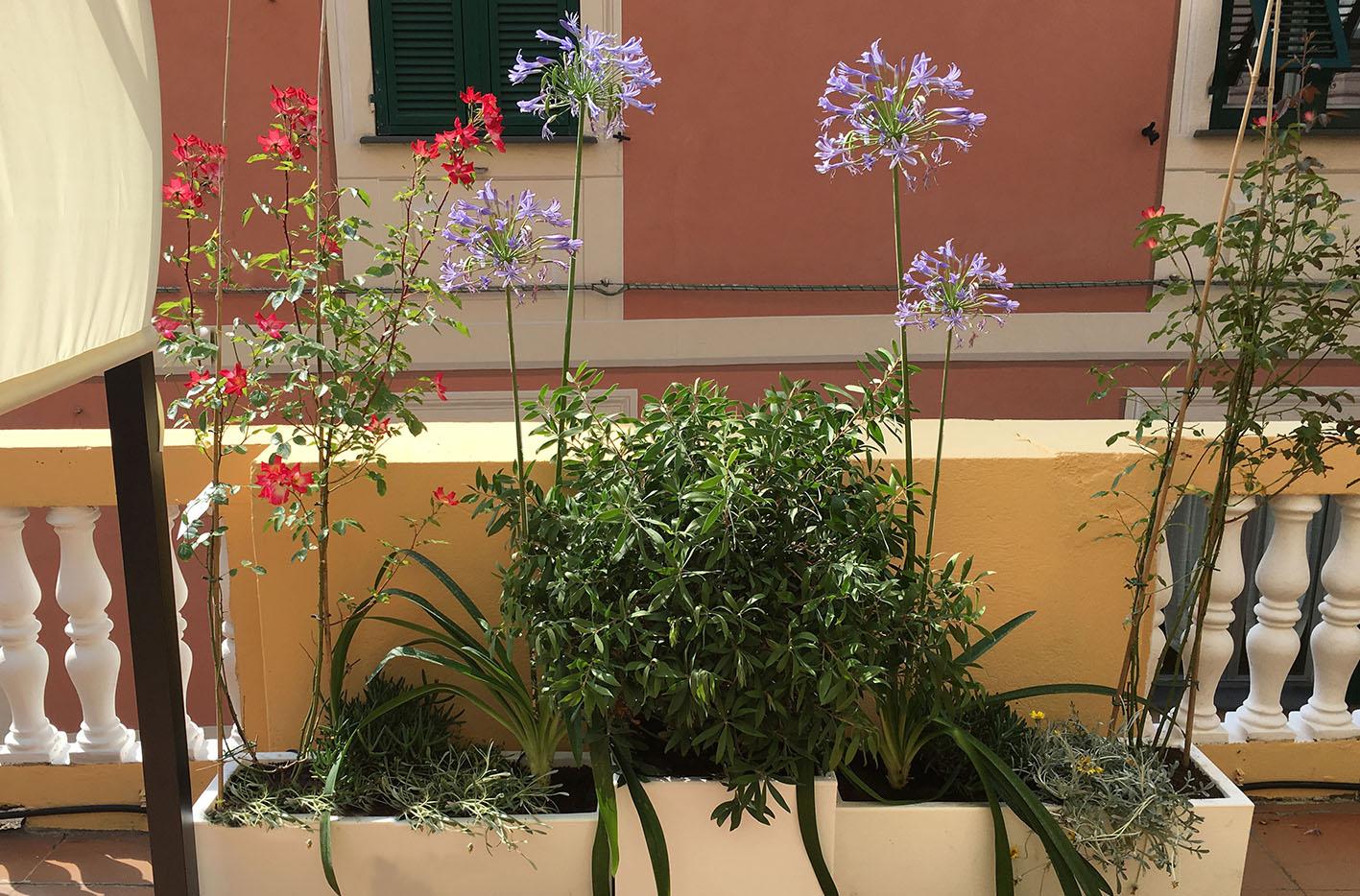 Progettazione terrazzo Genova_Cotto da vivere