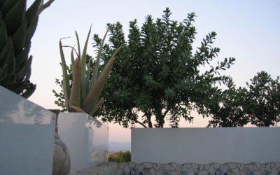 Arredamento terrazzo: fioriere acciaio da esterno