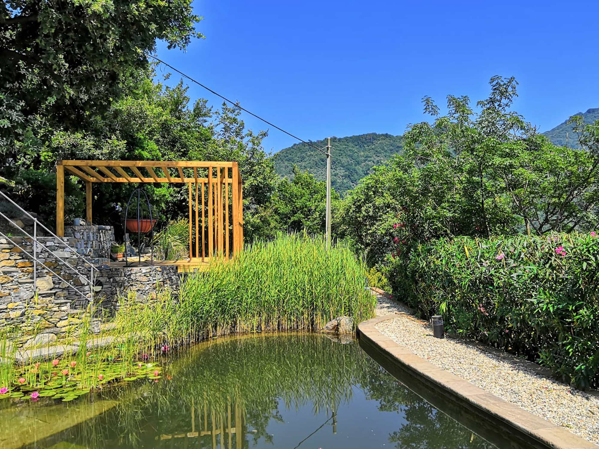 Progettazione_giardino_biopiscina_Genova (6)